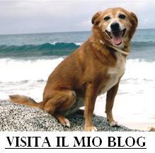 http://ritrattidianimali.blogspot.com/